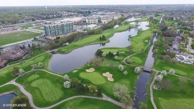 6420 Double Eagle Drive #1107, Woodridge, IL 60517 (MLS #10851344) :: John Lyons Real Estate