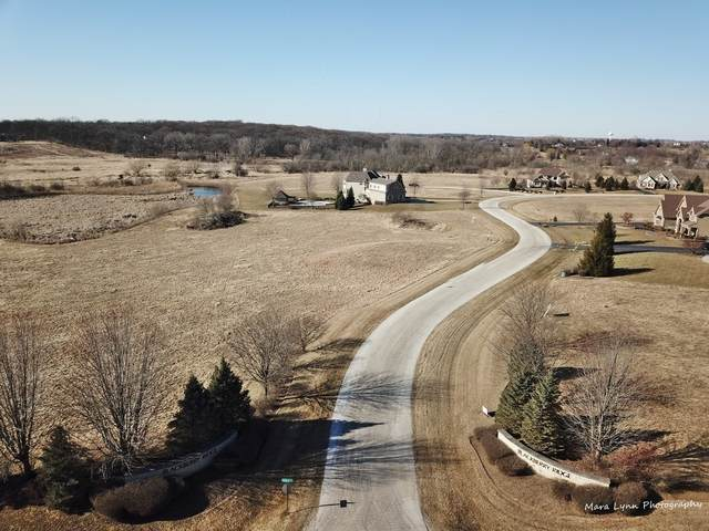 Lot 2 Derek Drive, Elburn, IL 60119 (MLS #10852300) :: Lewke Partners