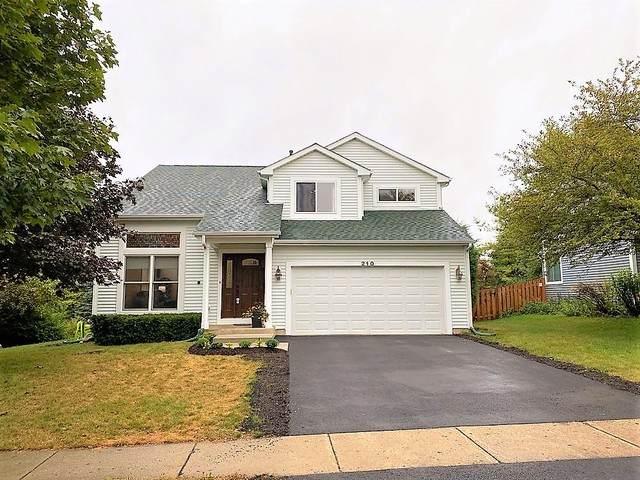 210 Cool Stone Bend, Lake In The Hills, IL 60156 (MLS #10852308) :: Ryan Dallas Real Estate