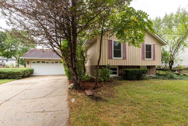 204 S Deerpath Drive, Vernon Hills, IL 60061 (MLS #10853172) :: Littlefield Group