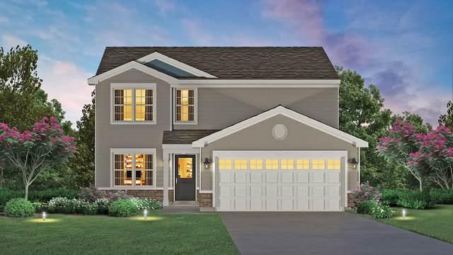 449 S Dollinger Drive, Romeoville, IL 60446 (MLS #10853256) :: Angela Walker Homes Real Estate Group
