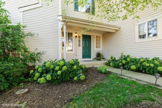 589 Windsor Drive, Fox Lake, IL 60020 (MLS #10853675) :: John Lyons Real Estate