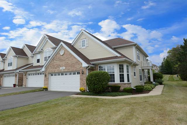 528 Telluride Court, Bartlett, IL 60103 (MLS #10853986) :: John Lyons Real Estate