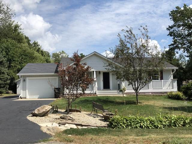 6708 Normandy Drive, Spring Grove, IL 60081 (MLS #10854236) :: Property Consultants Realty
