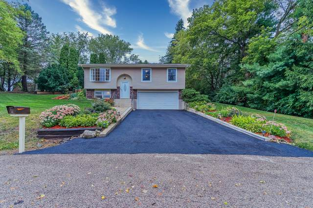 6011 Bur Lane, Crystal Lake, IL 60014 (MLS #10854457) :: Property Consultants Realty