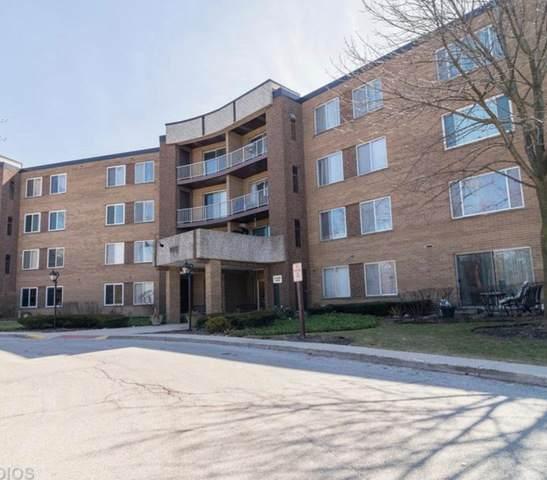 909 E Kenilworth Avenue #405, Palatine, IL 60074 (MLS #10854640) :: John Lyons Real Estate