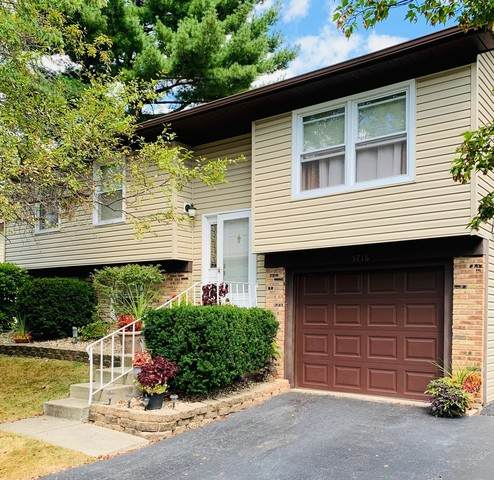 5716 Allemong Drive, Matteson, IL 60443 (MLS #10854653) :: Littlefield Group