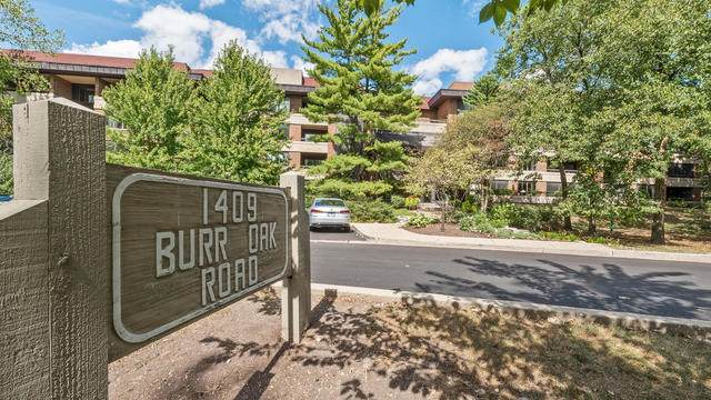 1409 Burr Oak Road 210A, Hinsdale, IL 60521 (MLS #10855210) :: John Lyons Real Estate