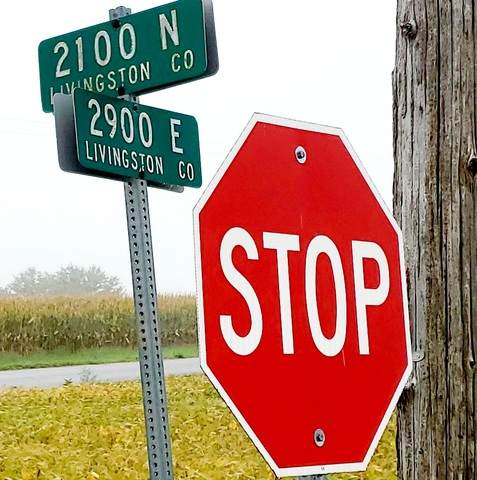 21075 N 2900 East Road, Emington, IL 60934 (MLS #10855332) :: BN Homes Group