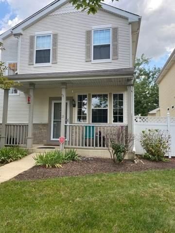 21 Freesia Drive, Romeoville, IL 60446 (MLS #10855672) :: Angela Walker Homes Real Estate Group
