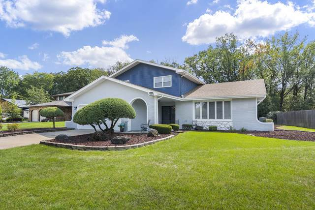 12401 W Martingale Lane, Homer Glen, IL 60491 (MLS #10856358) :: John Lyons Real Estate