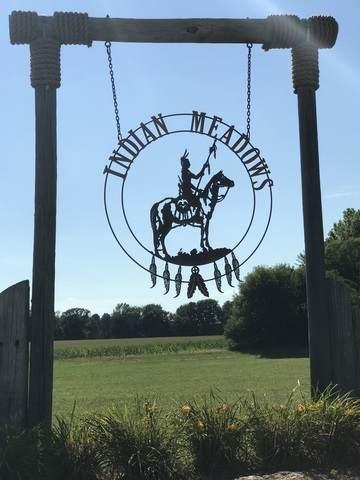 1424 Indian Trail, Kankakee, IL 60901 (MLS #10856639) :: John Lyons Real Estate