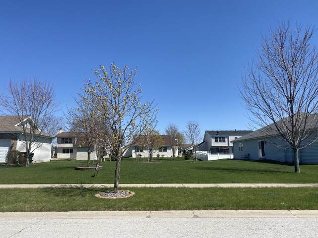 1439 Trailside Drive, Beecher, IL 60401 (MLS #10856826) :: John Lyons Real Estate