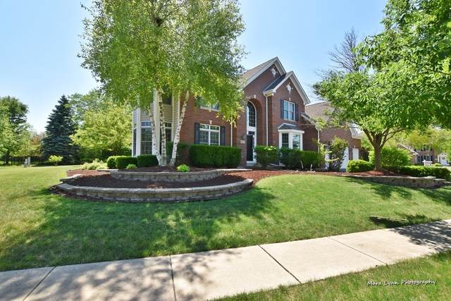919 Harbor Town Court, Geneva, IL 60134 (MLS #10856909) :: Lewke Partners