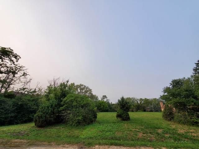 9850 Wild Cherry Lane, Palos Park, IL 60464 (MLS #10857061) :: Property Consultants Realty
