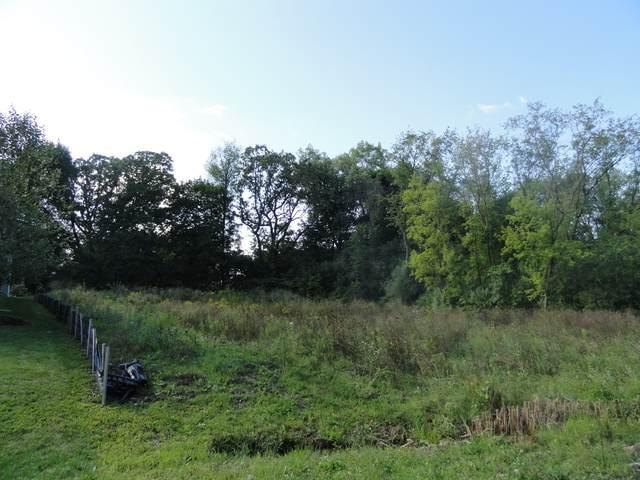 20944 Rub Of Green Lane, Barrington Hills, IL 60010 (MLS #10857084) :: John Lyons Real Estate