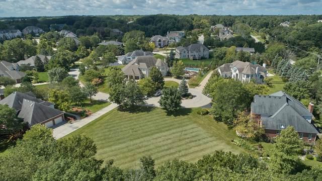 9 Seneca Court, Burr Ridge, IL 60527 (MLS #10857104) :: Schoon Family Group