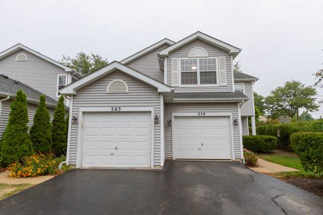 259 Meribel Court #259, Schaumburg, IL 60194 (MLS #10857222) :: John Lyons Real Estate