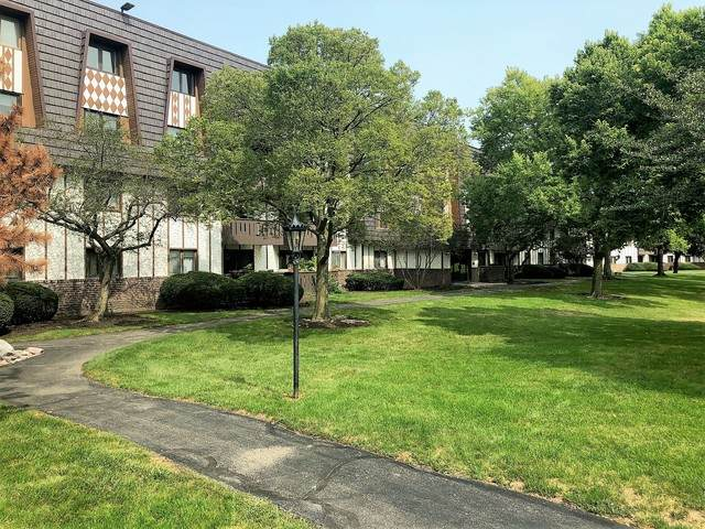 13200 W Heiden Circle #2101, Lake Bluff, IL 60044 (MLS #10857391) :: John Lyons Real Estate
