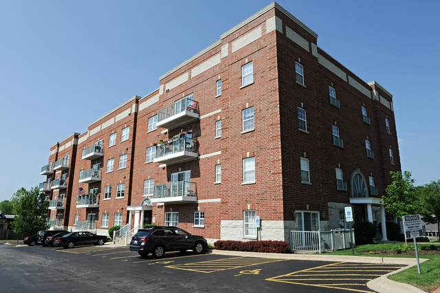 245 W Johnson Street #307, Palatine, IL 60067 (MLS #10857771) :: Littlefield Group