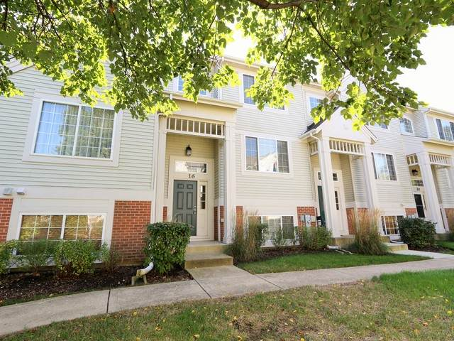 16 New Haven Drive #16, Cary, IL 60013 (MLS #10857784) :: Littlefield Group