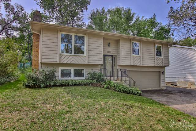 15 Grant Avenue, Lake In The Hills, IL 60156 (MLS #10858071) :: The Wexler Group at Keller Williams Preferred Realty
