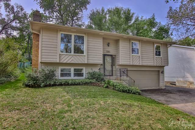 15 Grant Avenue, Lake In The Hills, IL 60156 (MLS #10858071) :: Ryan Dallas Real Estate