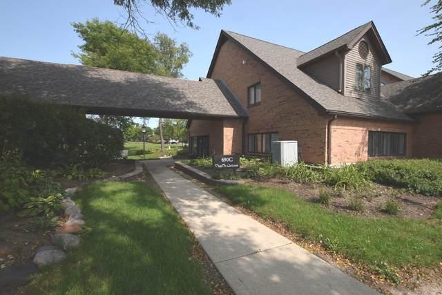 690 Terra Cotta Avenue, Crystal Lake, IL 60014 (MLS #10858823) :: Lewke Partners