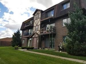 1010 Judson Street 2A, Bensenville, IL 60106 (MLS #10859045) :: John Lyons Real Estate