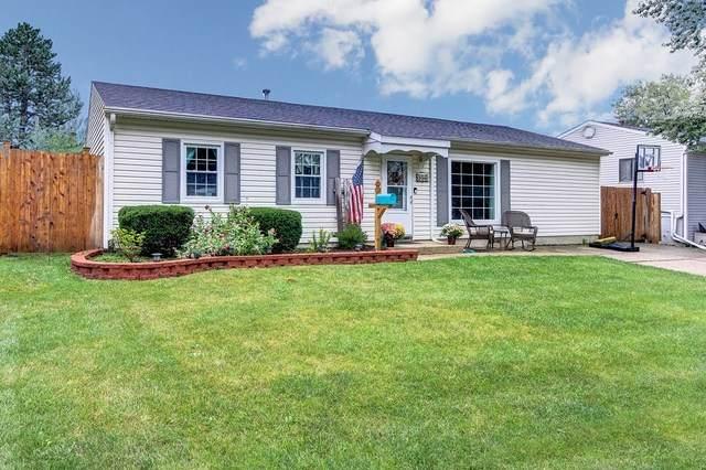 308 Haller Avenue, Romeoville, IL 60446 (MLS #10859212) :: Angela Walker Homes Real Estate Group