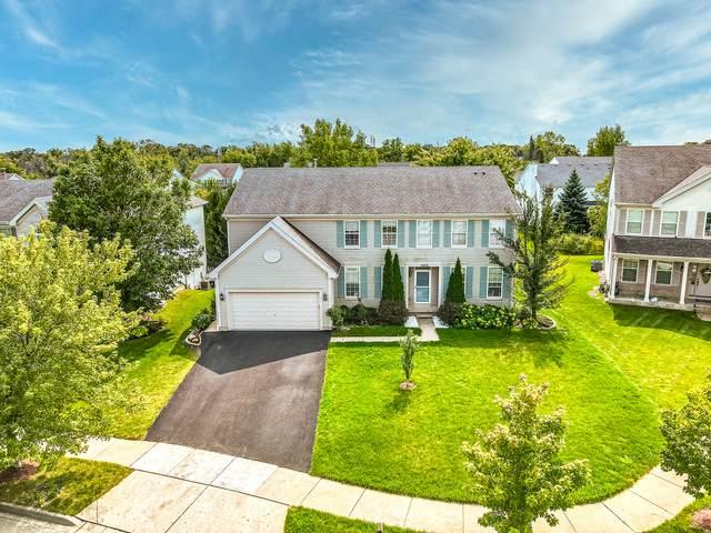 1620 Falcon Drive, Libertyville, IL 60048 (MLS #10859415) :: Janet Jurich