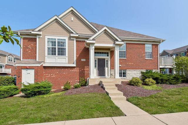 2533 Dunraven Avenue, Naperville, IL 60540 (MLS #10859602) :: John Lyons Real Estate