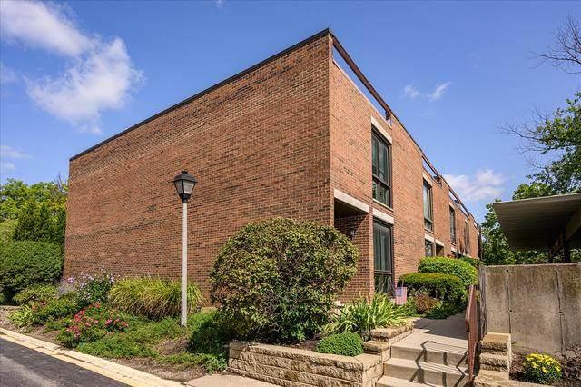 21 Birch Tree Court, Elmhurst, IL 60126 (MLS #10859621) :: John Lyons Real Estate