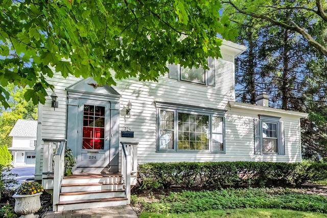 224 W Cook Avenue, Libertyville, IL 60048 (MLS #10860049) :: Property Consultants Realty