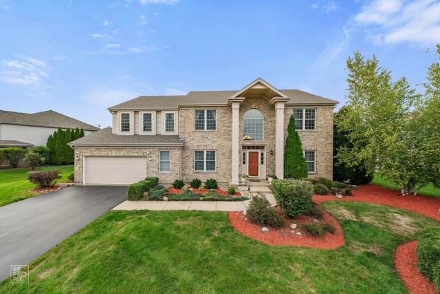 3650 White Deer Drive, Algonquin, IL 60102 (MLS #10860092) :: Ryan Dallas Real Estate