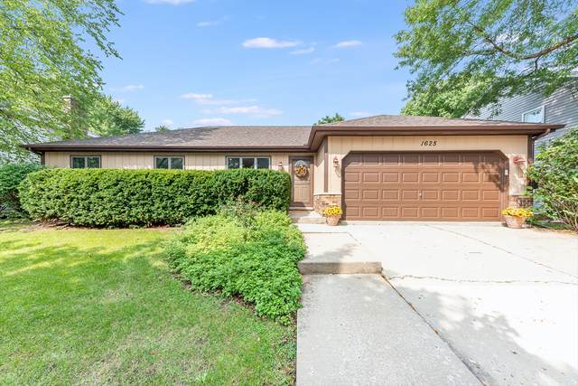 1625 Kenyon Drive, Naperville, IL 60565 (MLS #10860189) :: The Wexler Group at Keller Williams Preferred Realty