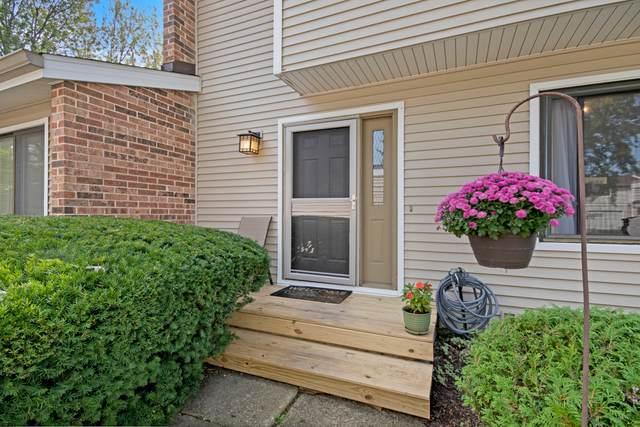 1063 Rainwood Drive, Aurora, IL 60506 (MLS #10860449) :: Property Consultants Realty