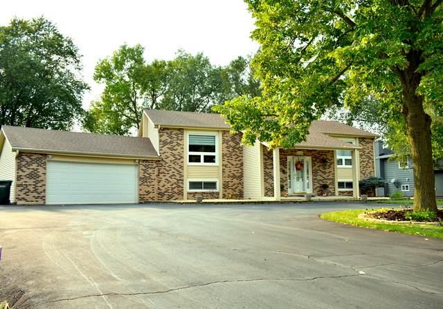 10S136 Alago Road, Naperville, IL 60564 (MLS #10860933) :: John Lyons Real Estate
