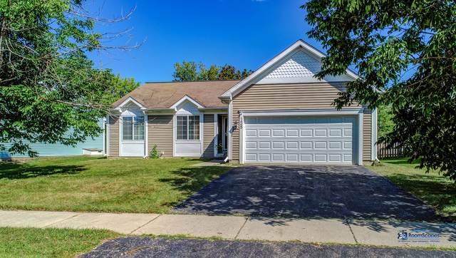 158 Oxford Circle, Grayslake, IL 60030 (MLS #10861025) :: Janet Jurich