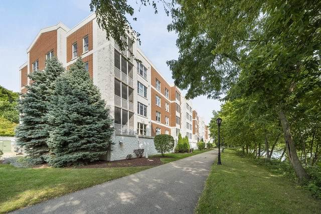 148 N Water Street #203, Batavia, IL 60510 (MLS #10861232) :: The Wexler Group at Keller Williams Preferred Realty