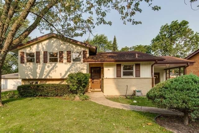 204 S Yale Avenue, Arlington Heights, IL 60005 (MLS #10861430) :: John Lyons Real Estate