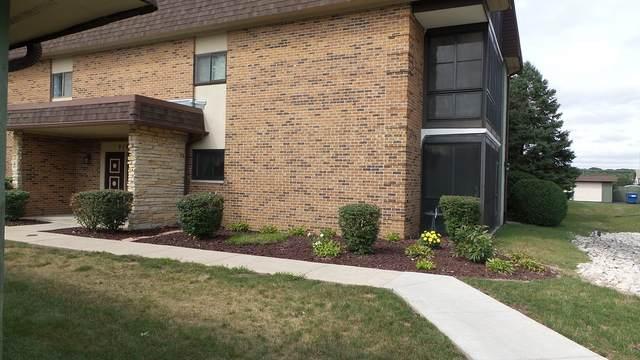 9163 Center Road F20, Palos Hills, IL 60465 (MLS #10861504) :: Ryan Dallas Real Estate