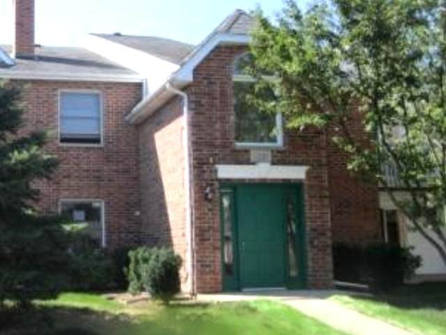 1331 Cunat Court 1A, Lake In The Hills, IL 60156 (MLS #10861643) :: John Lyons Real Estate