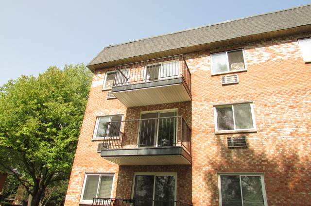 1001 N Mill Street #212, Naperville, IL 60563 (MLS #10862129) :: John Lyons Real Estate