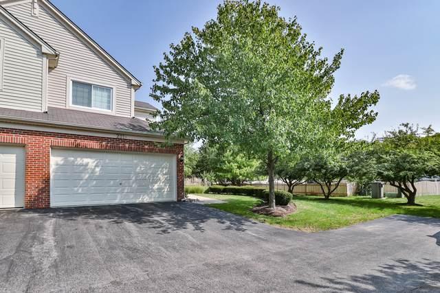 281 Nicole Drive F, South Elgin, IL 60177 (MLS #10862278) :: John Lyons Real Estate