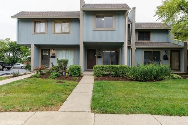 462 Ziegler Drive, Grayslake, IL 60030 (MLS #10862449) :: John Lyons Real Estate