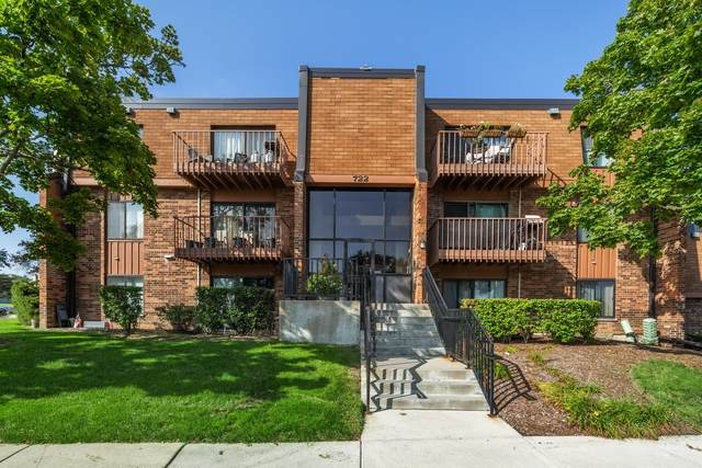 722 Tipperary Court 3A, Schaumburg, IL 60193 (MLS #10862517) :: The Wexler Group at Keller Williams Preferred Realty