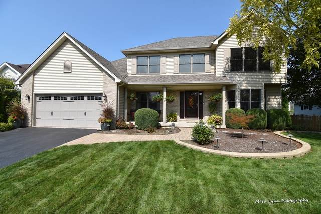 452 Windsor Drive, Oswego, IL 60543 (MLS #10862601) :: Littlefield Group