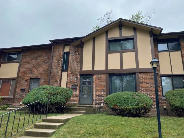 1S170 Ingersoll Lane, Villa Park, IL 60181 (MLS #10862688) :: Littlefield Group