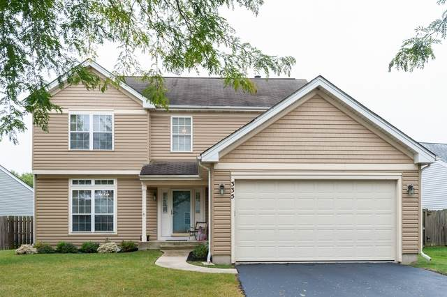 335 W Weeping Willow Road, Round Lake, IL 60073 (MLS #10862753) :: Ryan Dallas Real Estate